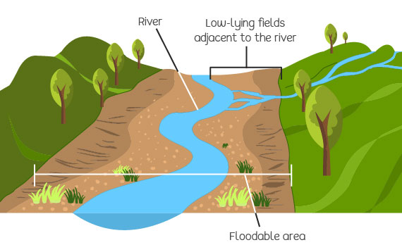 An example of a land liable to flooding