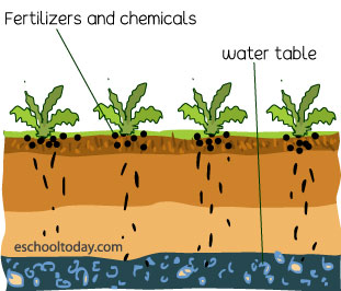 Do fertilizers cause water pollution?