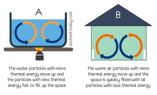 Convection in liquids and gases
