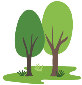 Trees absorb carbon dioxide