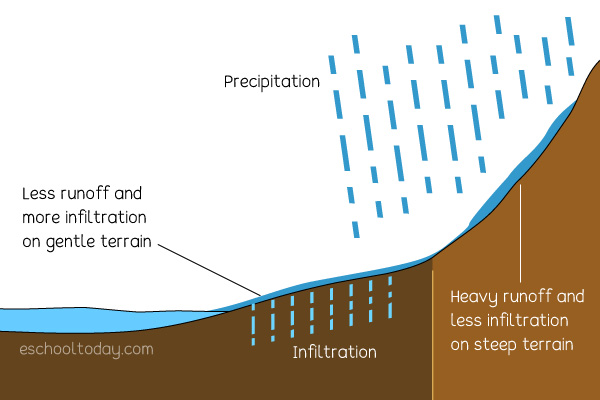 What can affect runoff in the water cycle?