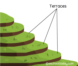 Soil conservation with terrace farming