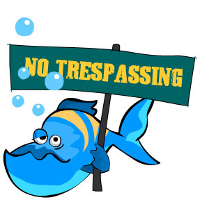 What is being done about overfishing?