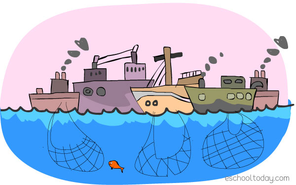 Overfishing is a real environmental threat