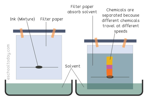 How does paper chromatography work?