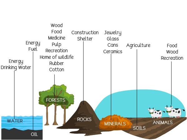 Where do natural resources come from?