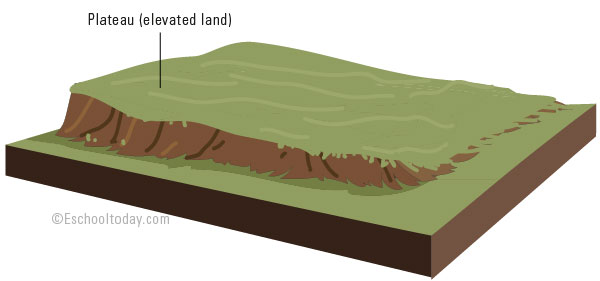 What does a plateau look like?