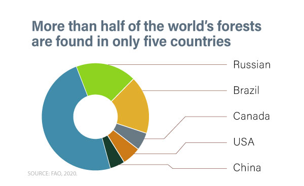World distribution of forests