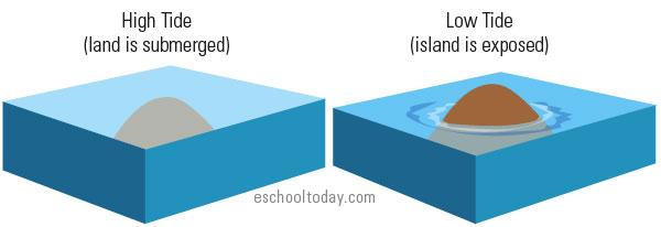 Island formation