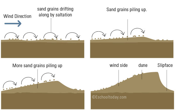 How is a sand dune formed?