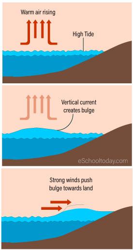 Development of a storm surge