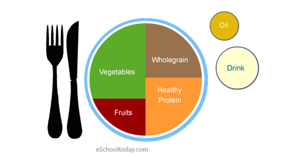 The Healthy Food Plate