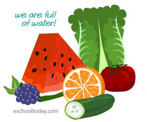 Foods that contain water