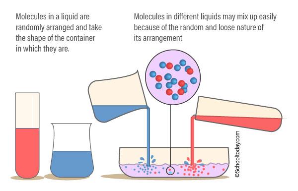 Molecules in a liquid