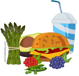 What are food nutrients?